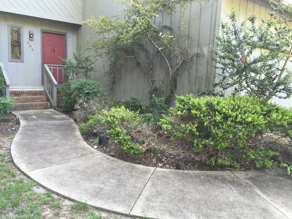 foundation-planting-2