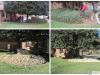 Shrub Removal and Rock Bed Installation